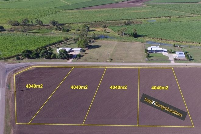 Picture of Lot 34,35,36 Nuttall Road, JARVISFIELD QLD 4807