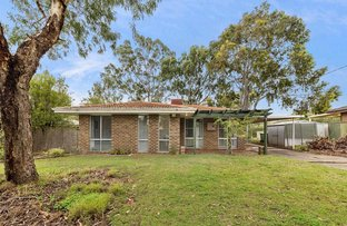 Picture of 15 Jacqueline Drive, Thornlie WA 6108