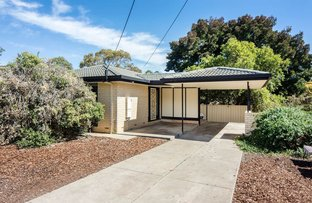 Picture of 7 Abbott Avenue, Morphett Vale SA 5162