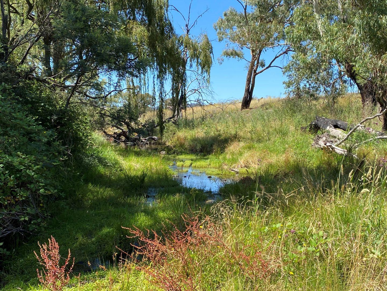 69 Campbells Creek Road, Mudgee NSW 2850, Image 0