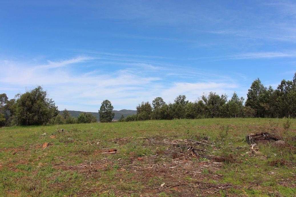 13 Killarney Gap Road, Bingara NSW 2404, Image 2