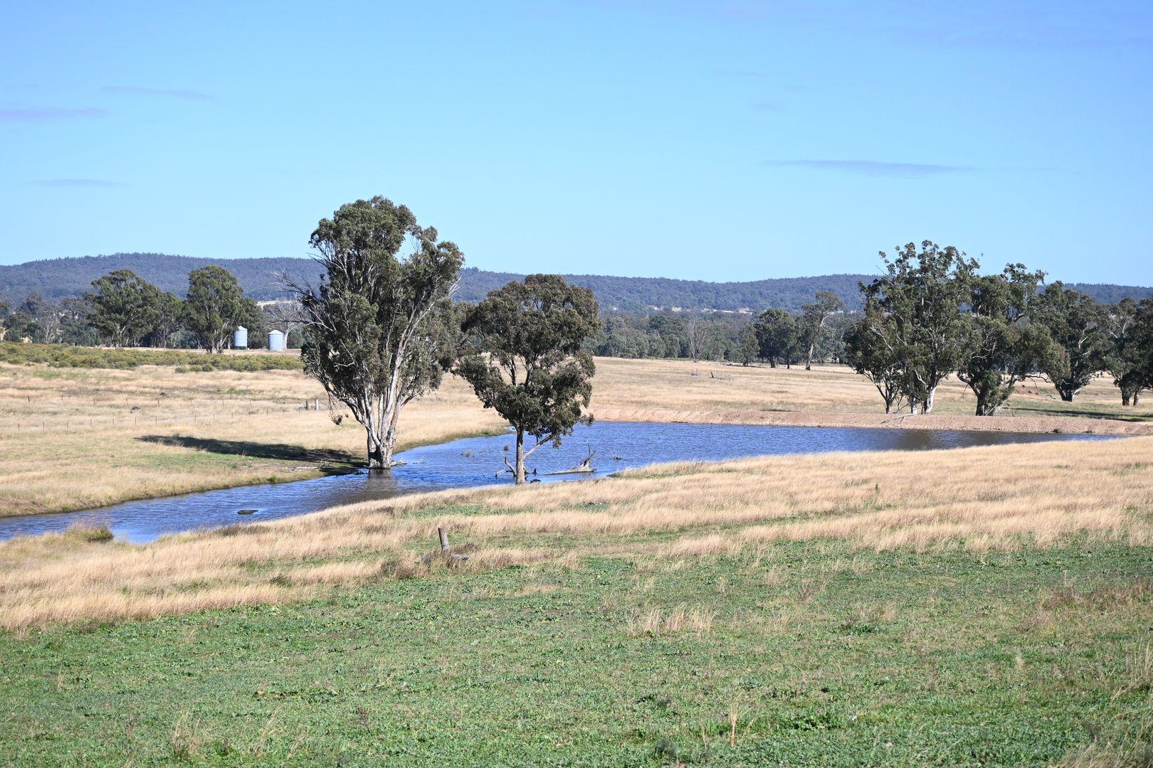 'Wyoming' Digilah West Road, Dunedoo NSW 2844, Image 0