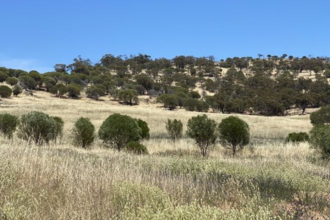 Picture of Lot 120 Whitfield Rd, TOODYAY WA 6566