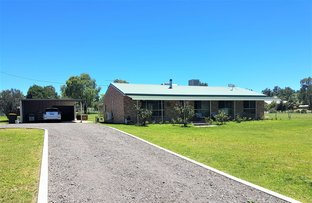 Picture of 177 LIMBRI RD, Kootingal NSW 2352