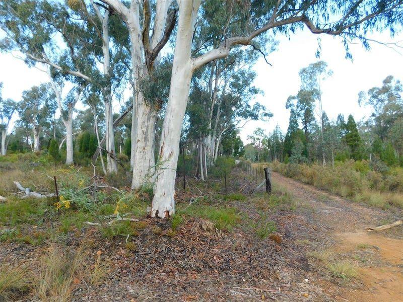 4166 Baradine Road, Coonabarabran NSW 2357, Image 1