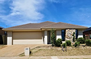 Picture of 8 Alabaster Avenue, Cobblebank VIC 3338