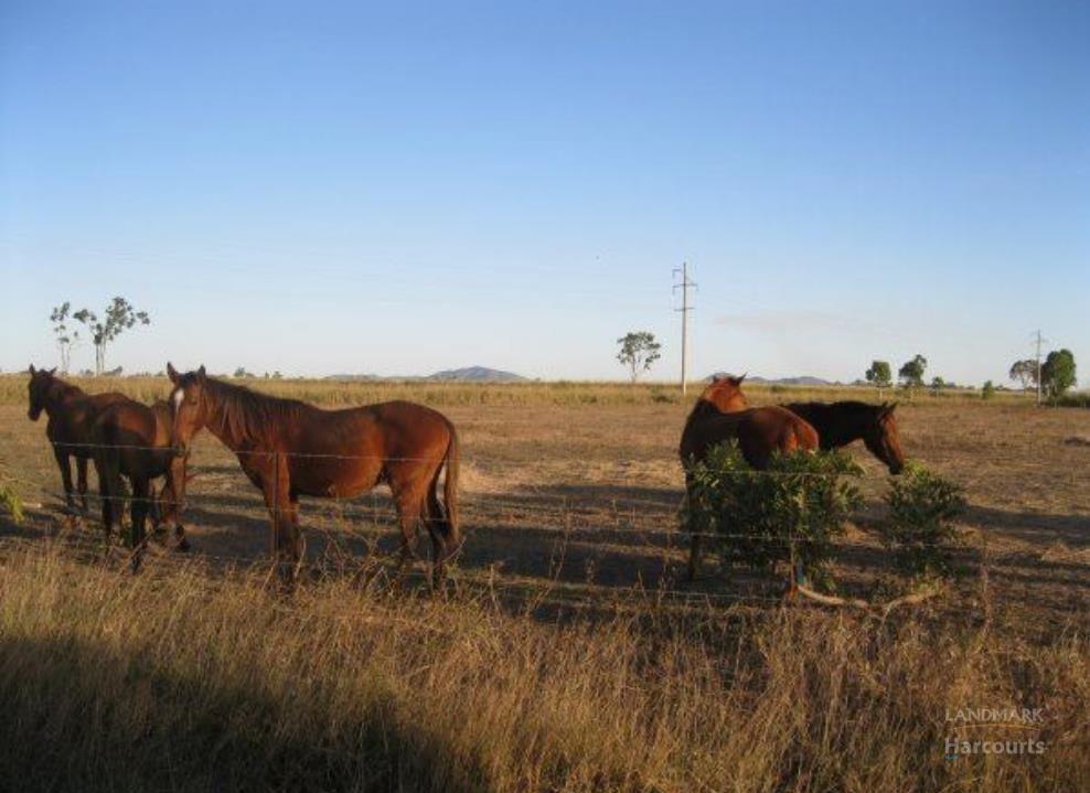 15 Shepherd Road, Ayr QLD 4807, Image 2