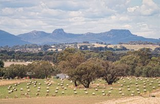 Picture of Range View 228 Stony Park Road, Jindera NSW 2642