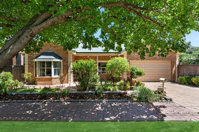 Picture of 16a Windsor Street, MALVERN SA 5061