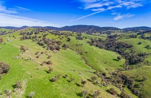 Picture of Ranch Road, Tintaldra VIC 3708