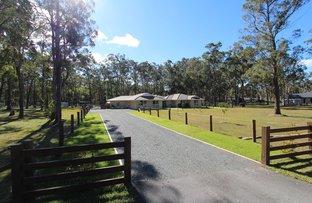 Darawank NSW 2428