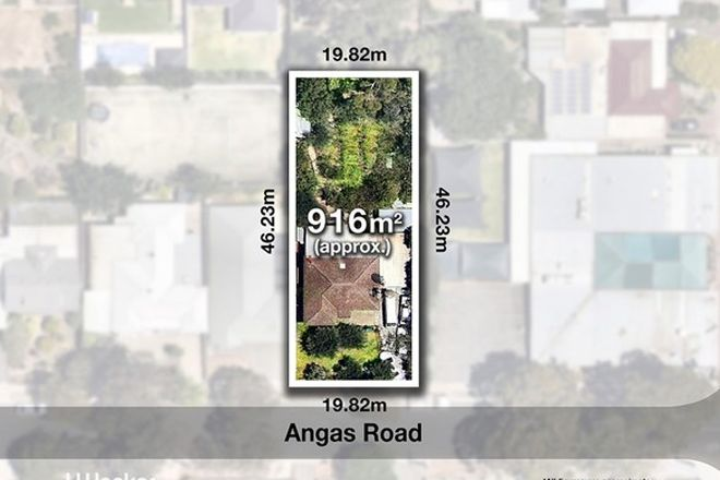 Picture of 2 Angas Road, MAGILL SA 5072