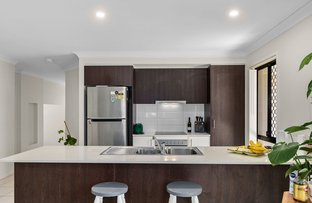 Picture of 38 Wildflower Circuit, Upper Coomera QLD 4209
