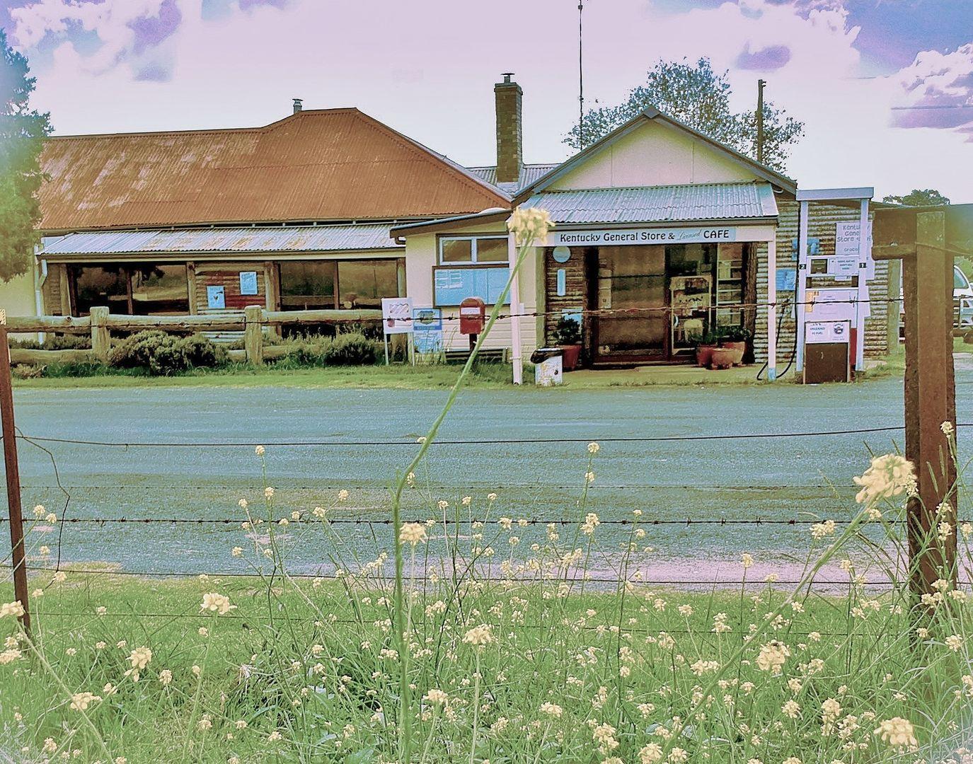 46 Noalimba Avenue, Kentucky NSW 2354, Image 0