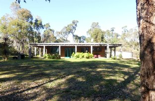 Picture of 47 Sparsa Close, Northcliffe WA 6262
