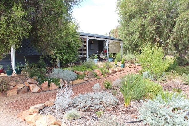 Picture of 16 Milhinch St, MULUCKINE WA 6401