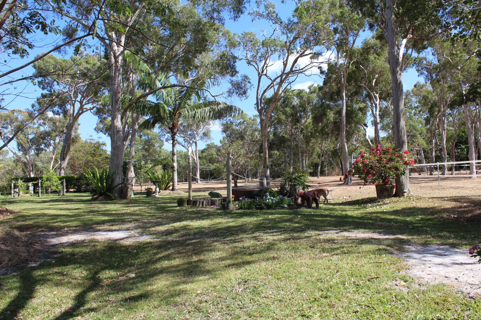 24 Clay Cl, Cooktown QLD 4895, Image 2