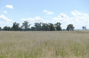 "Picture of ""Newrybar""/539 Kelso Lane, Tamworth NSW 2340"