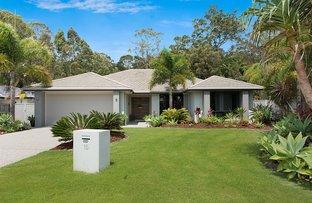 Picture of 15 Paluma Terrace, Buderim QLD 4556