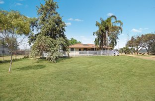Jarrah Park 24 Prairies Road, Gunnedah NSW 2380