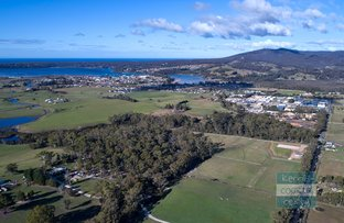 Picture of Canhams Road, St Helens TAS 7216