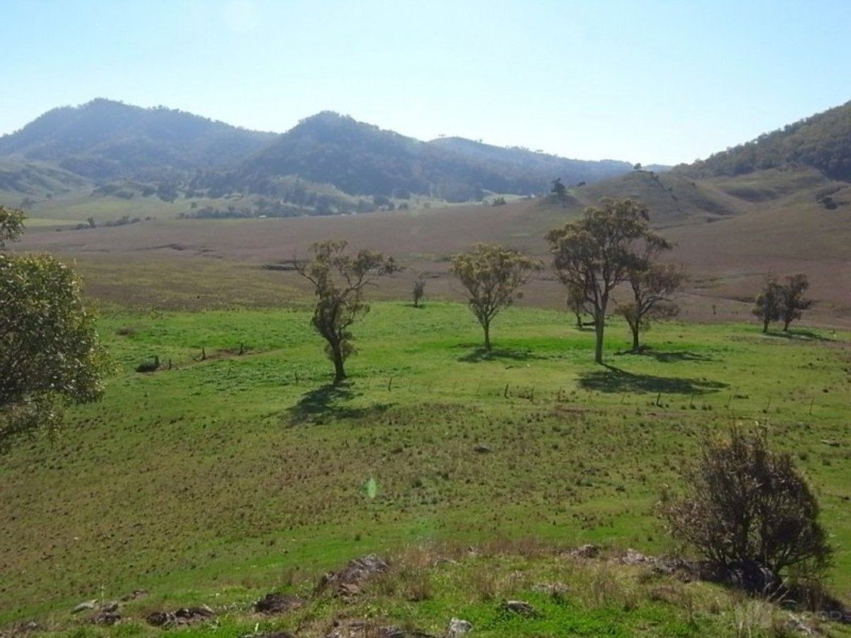 Lot 223 sandy creek road mccullys gap nsw 2333 vacant for Sandy creek