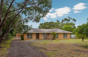 Picture of 104 Whittakers Lane, Riddells Creek VIC 3431