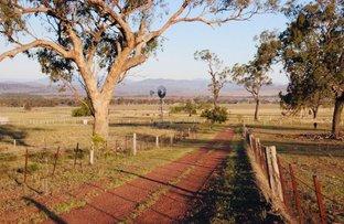 "Picture of 774 ""Hillsview"" Moobi Road, Scone NSW 2337"