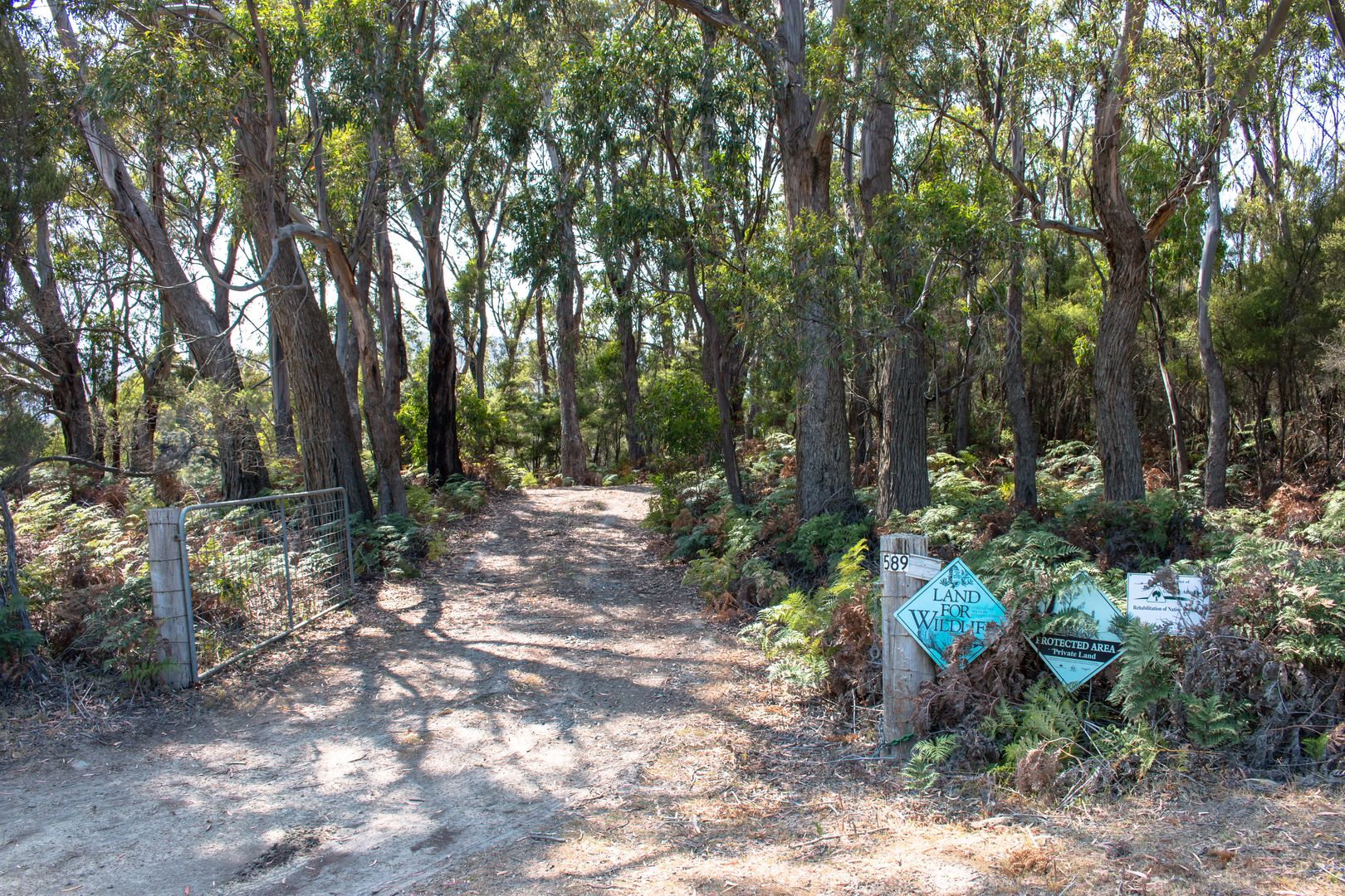 589 Cloudy Bay Road, South Bruny TAS 7150, Image 1