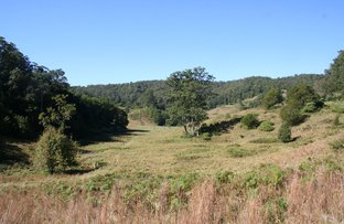 Picture of Lot 242 Galbraiths Road, Bellangry NSW 2446