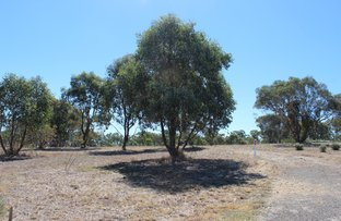 Picture of 38 Lakeside Drive, Chesney Vale VIC 3725