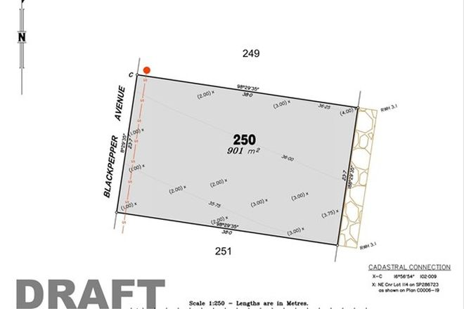 Picture of Lot 250 The Springs, NIKENBAH QLD 4655