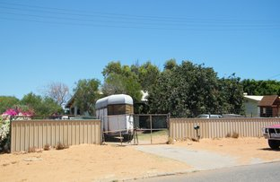 Picture of 6 Quince Street, Carnarvon WA 6701