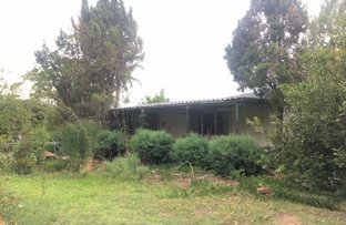 Picture of 1118 Paterson River Road, Mount Rivers NSW 2311