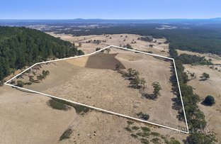 Picture of CA1, Section 10 Leslies Road, Mount Franklin VIC 3461