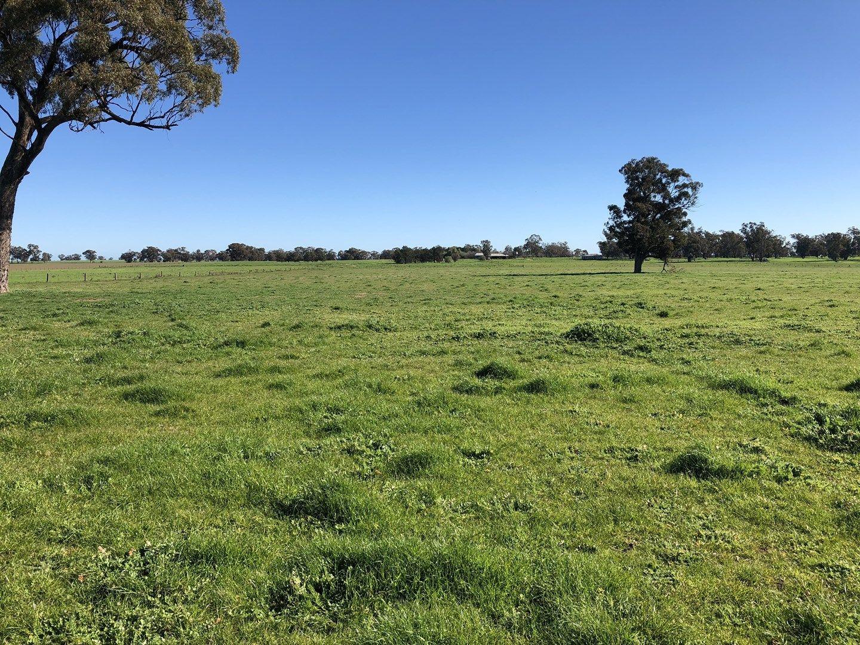 1802 Alma Park Road, Alma Park NSW 2659, Image 0