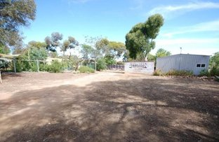 Picture of 24 Northwood Street, Narrogin WA 6312