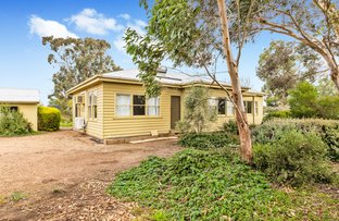 Picture of 1043 Bannockburn-Shelford Rd, Teesdale VIC 3328