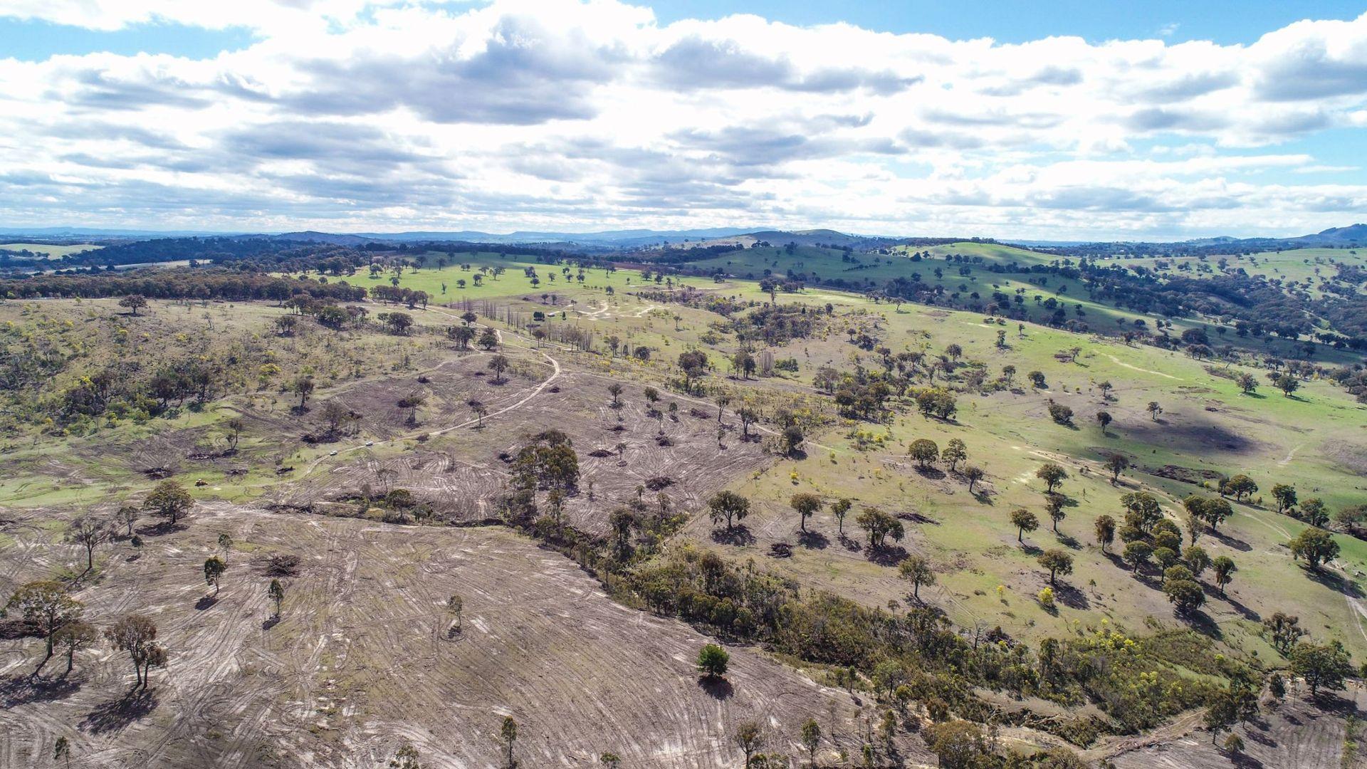 Claremont, Neville NSW 2799, Image 1