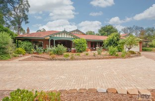 Picture of 183 Hermitage Drive, The Vines WA 6069