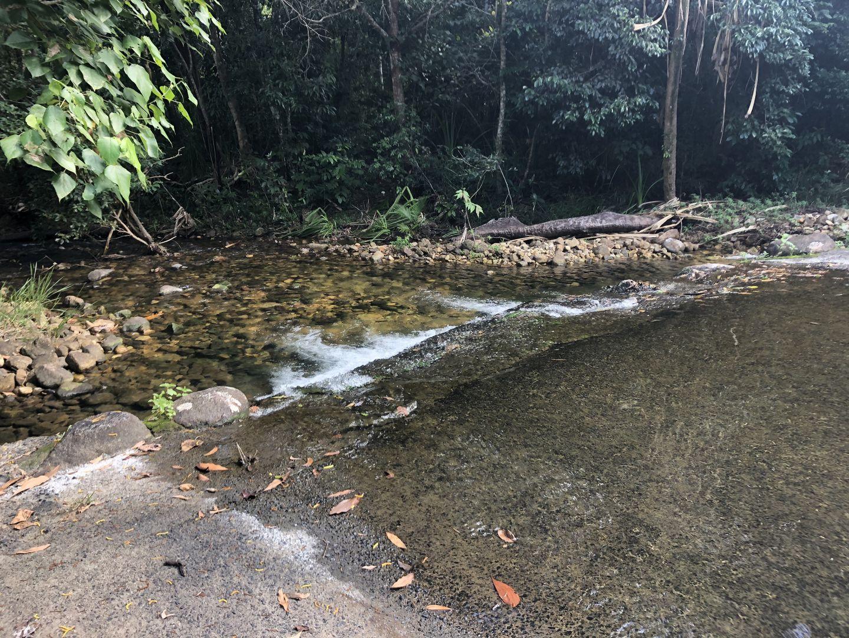 629 Tully Gorge Rd, Jarra Creek QLD 4854, Image 0