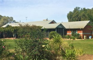 . Aratual rd, Deniliquin NSW 2710