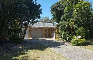 Picture of 23 Cordia Street, Currimundi QLD 4551