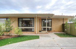 Picture of 2a Avondale Street, Clarence Park SA 5034
