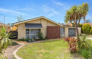 Picture of 102 Raye Street, Tolland NSW 2650