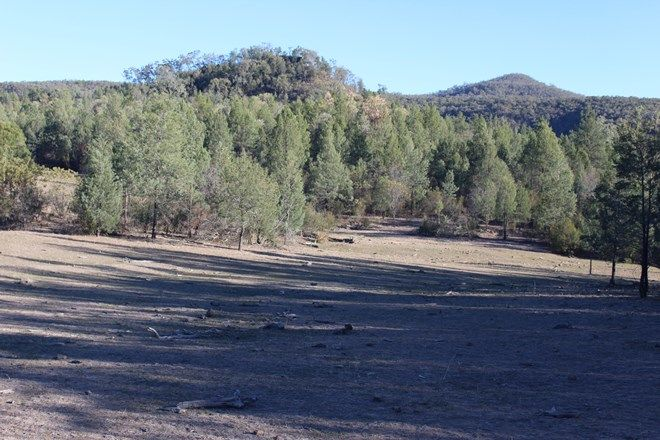 """Picture of '' The Summit"""", BERRIGAL NSW 2390"""