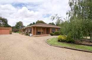 16 Meadow Court, Everton VIC 3678