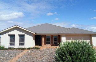 Picture of 95 ROBINSON STREET, Whyalla Jenkins SA 5609
