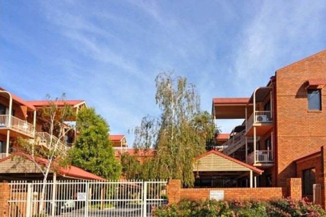 Picture of 7/23 Winifred  Street, ADELAIDE SA 5000