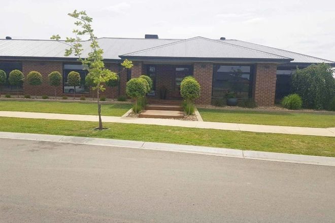 Picture of 13 Egret Drive, SHEPPARTON VIC 3630